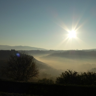 Early Morning Tuscany