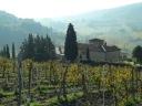 On the way to San Gimignano
