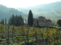 On the way to San Gimignano